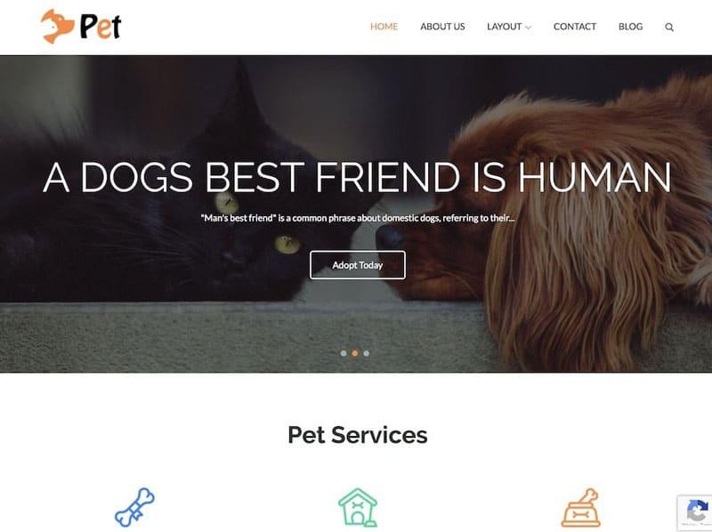 دانلود قالب رایگان وردپرس Pet Business