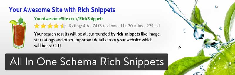 افزونه All in One Schema Rich Snippets