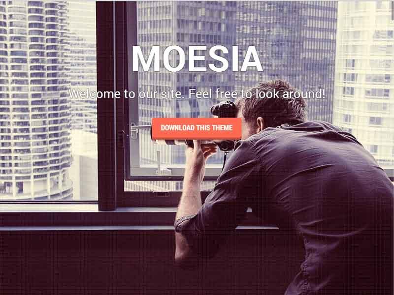 دانلود قالب شرکتی وردپرس Moesia